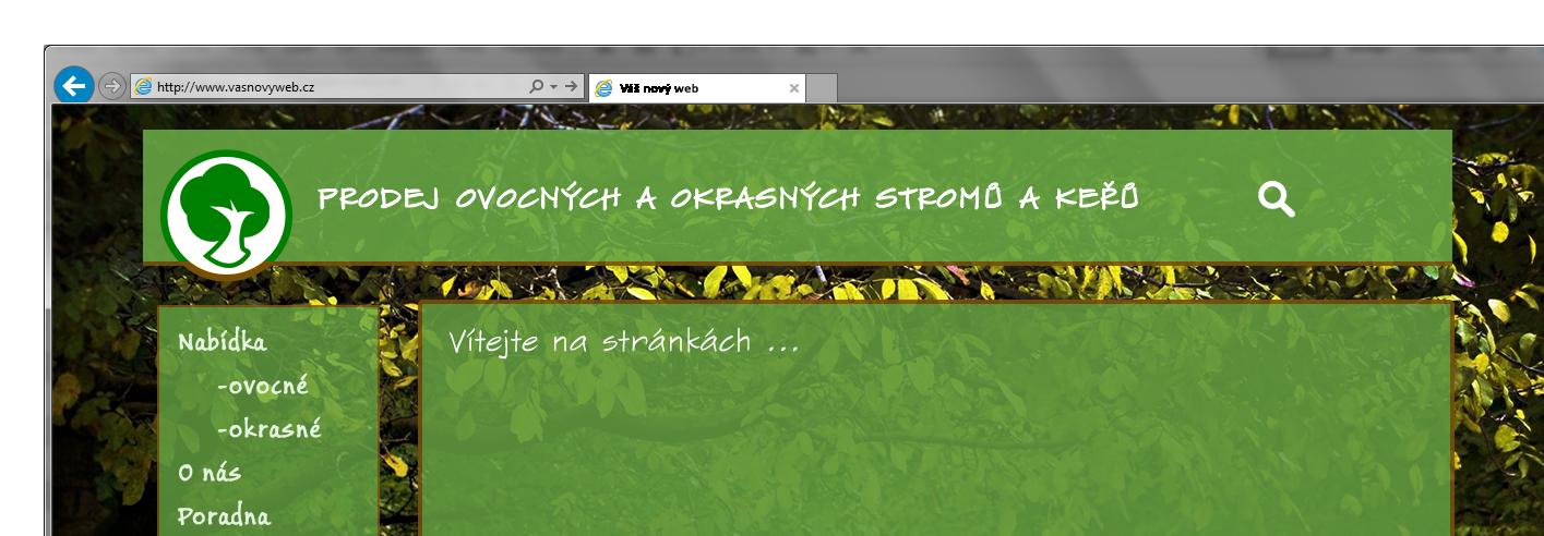 web slide ukázka